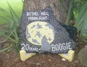 Bethel Hill Moonlight 50 Miler