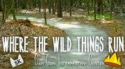 Where the wild things run 5k