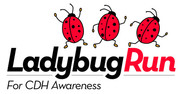 Ladybug Run for CDH Awareness