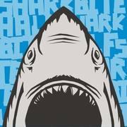 Shark Bite Half & 5K