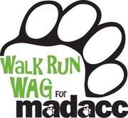 Walk, Run, Wag for MADACC