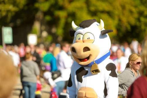 MO'Cowbell Fever!!