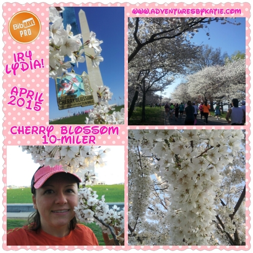 Cherry Blossom 10 Mile Reviews | District of Columbia | 10 ...