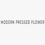 Modern Pressed Flower