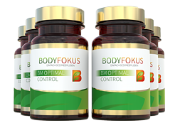 BM Optimal Control - 6 Dosen