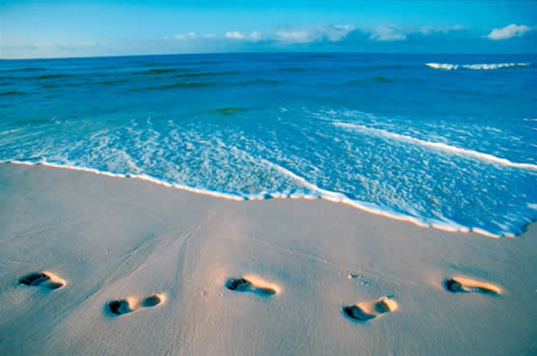 Beach hookup