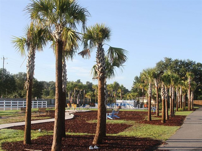 Central Florida RV Park 170 Sites Loading Images