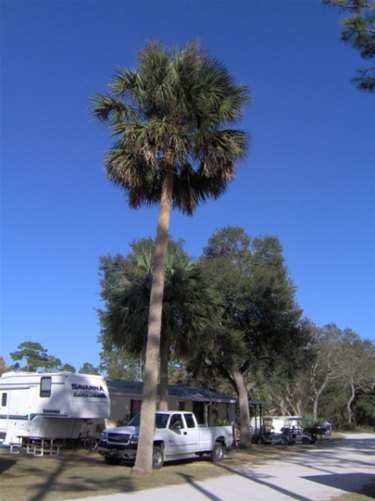 Whispering Pines Rv Park