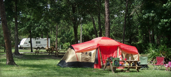 Wekiva falls rv resort for Fish camp lake eustis