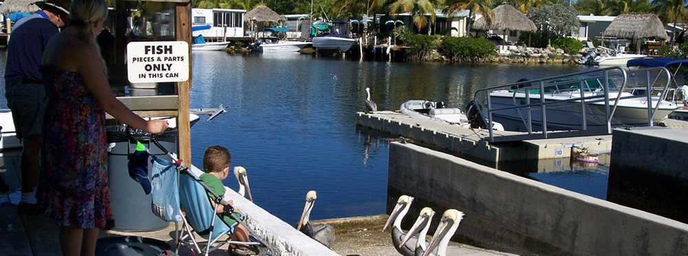 Key Largo Kampground Amp Marina