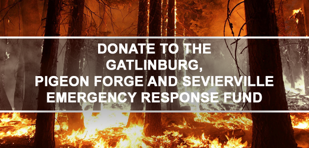 GIve to the Smoky Mountain Wildfires