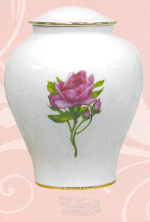 Porcelain Pink Rose