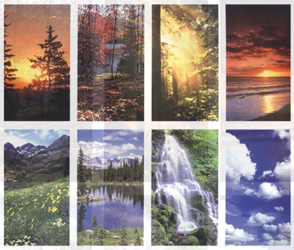 Scenic Repose - Set of 8