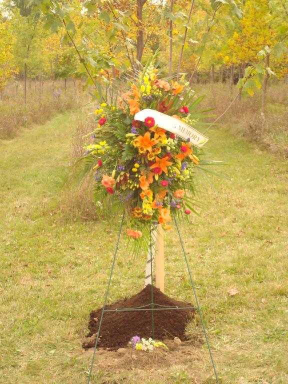 A Tree Planting