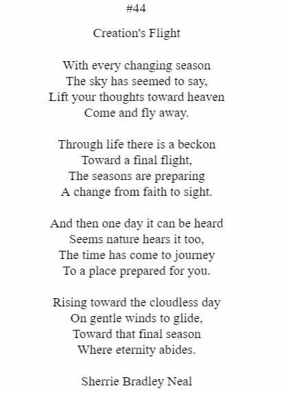Creation's Flight