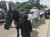 Horse and Carriage Service
