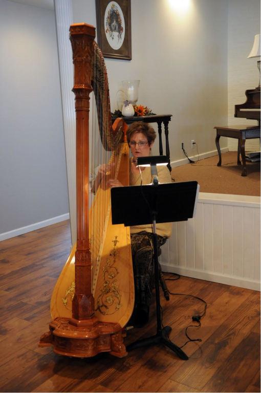 2016 Music- Harpist Bobbie Strobhar