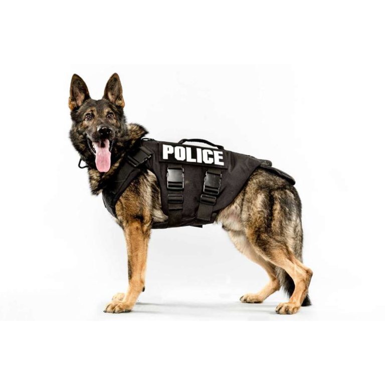 La Porte City & County Police