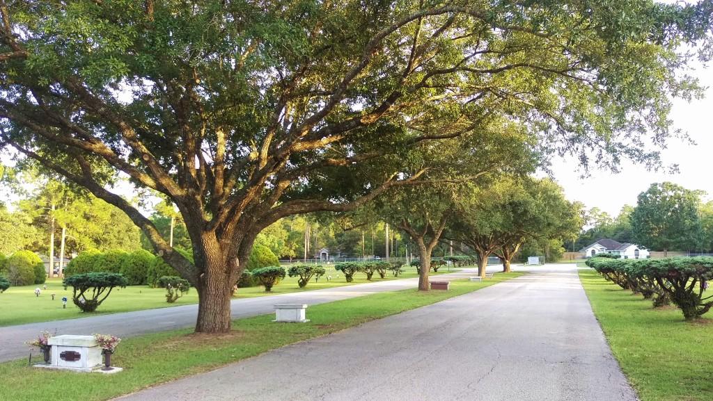 Cemetery Main Drive