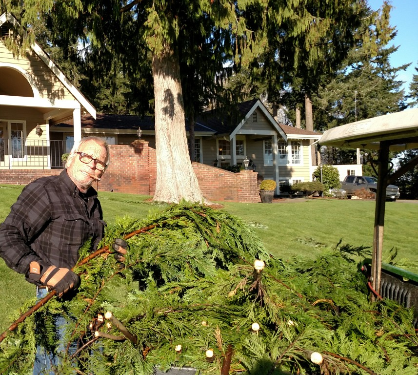 MANY branches collected to build GIANT wreath