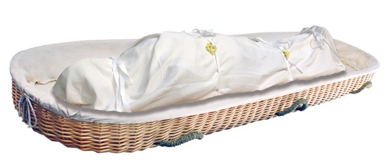 Shroud with Willow Carrier $385-695