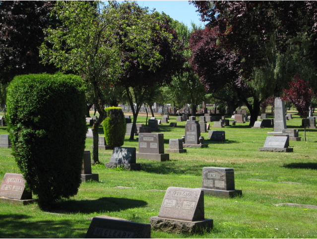 The cemetery grounds