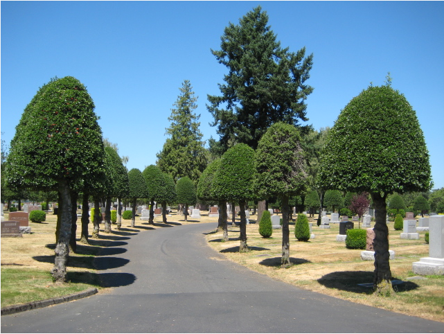 Cemetery road to the chapel