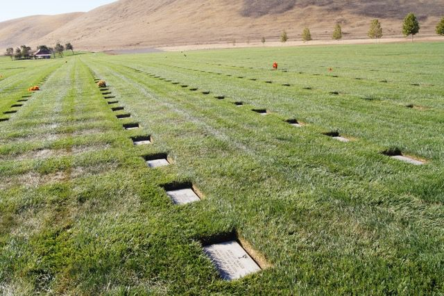 In-ground Casket or Cremation burial San Joaquin Valley National Cemetery