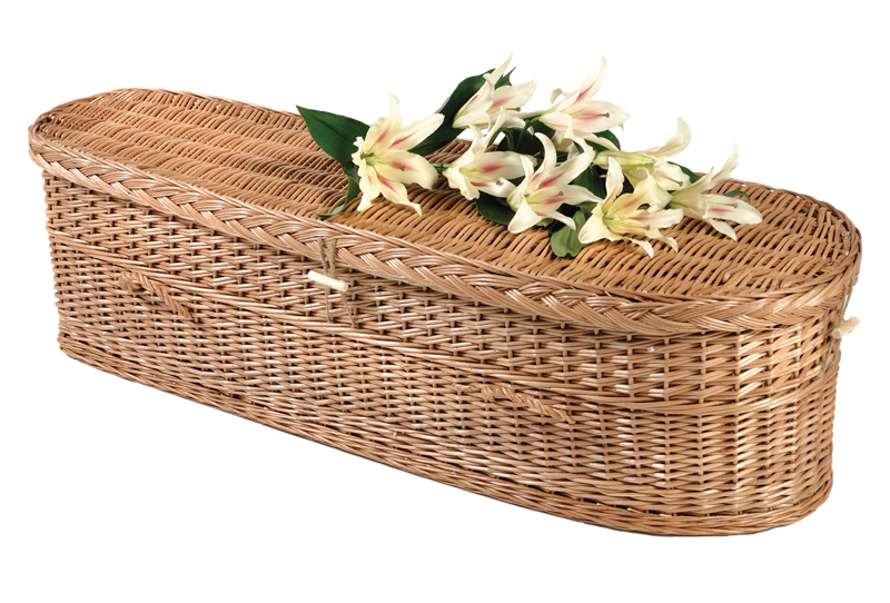 Willow Child's Casket