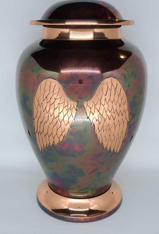 Iridescent Wings $200