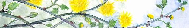 Floral-202