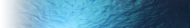 Ocean-293