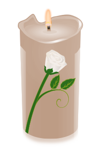 candle rose white