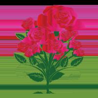 gesture dozen_roses
