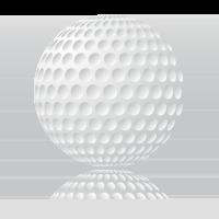 gesture golf
