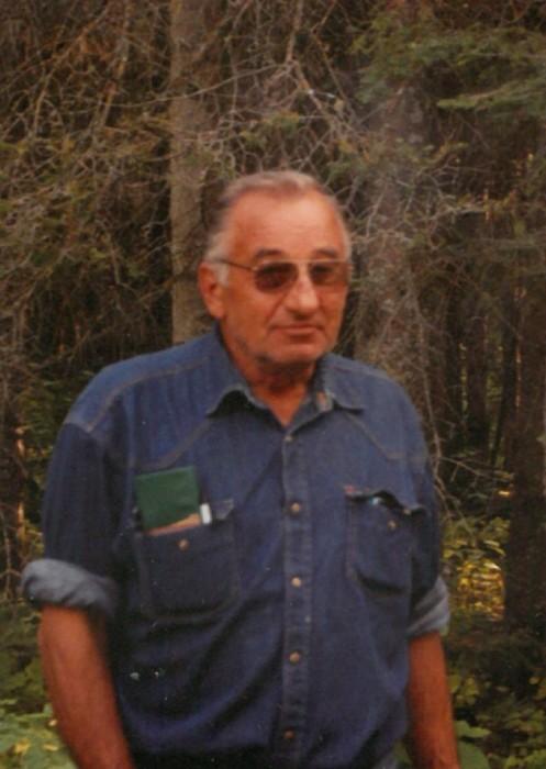Obituary for Alphonse Novak | Tompkins Funeral Home
