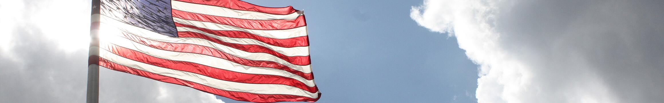 AMerican Veteran 11