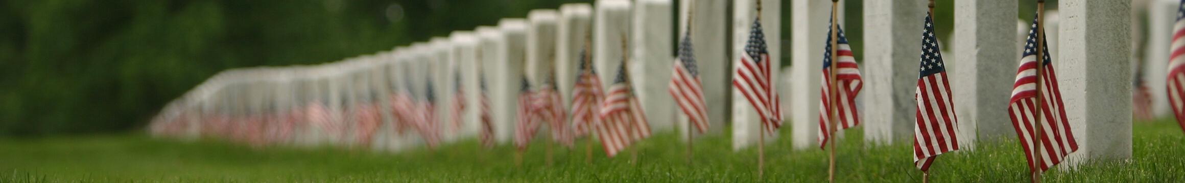 American Veteran 08
