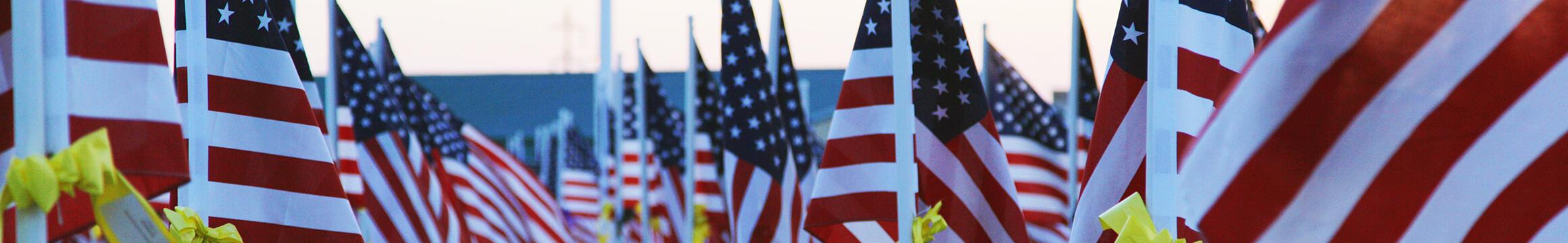 American Veteran 09