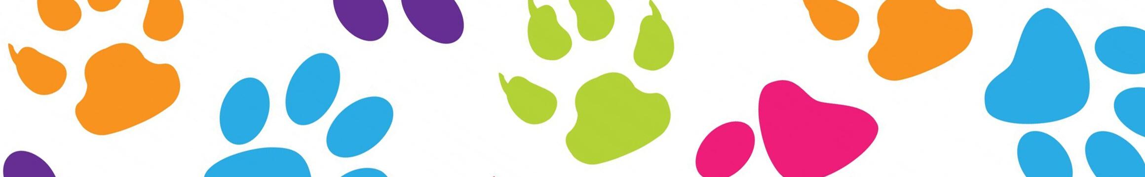 Animals Pets 10