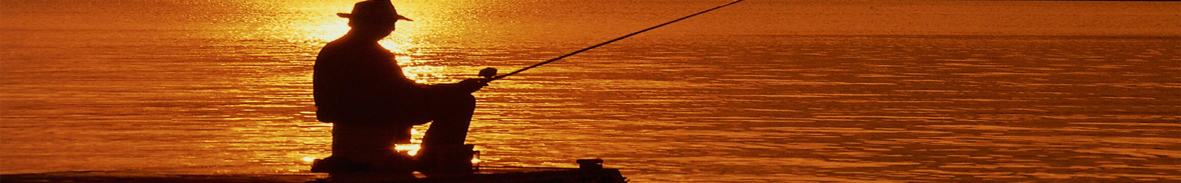 Cfishing 1