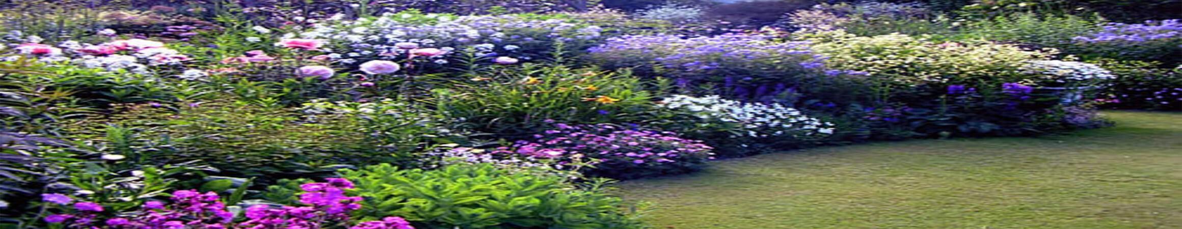 Custom Garden