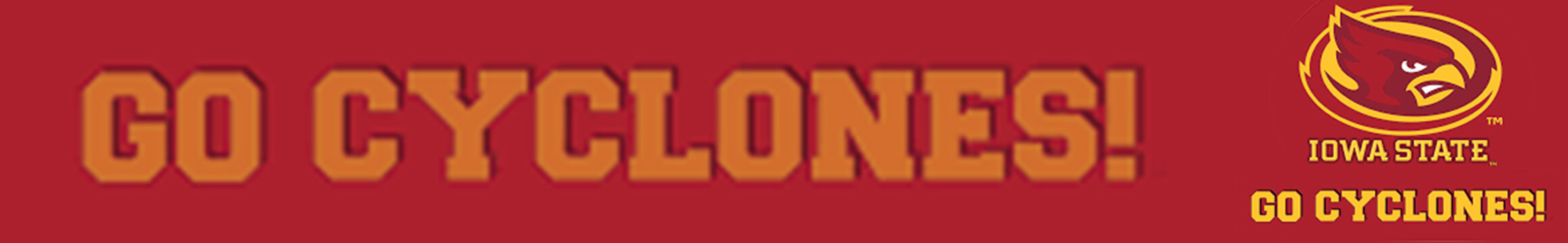 Cyclones Custom Banner