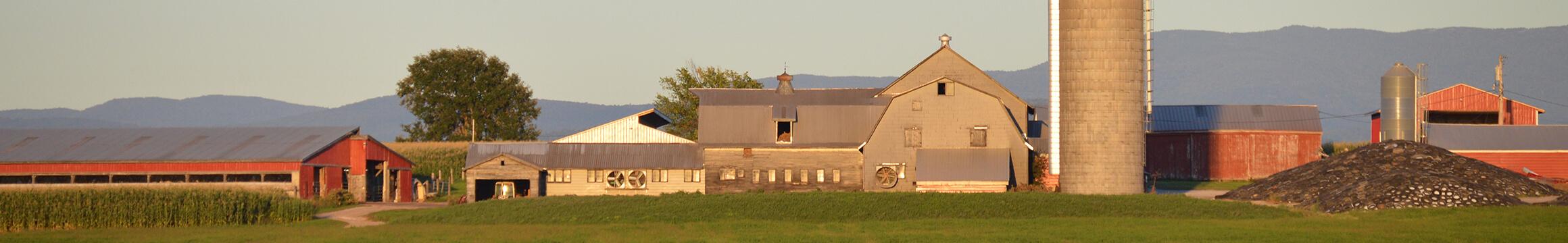 Farming Rural 04