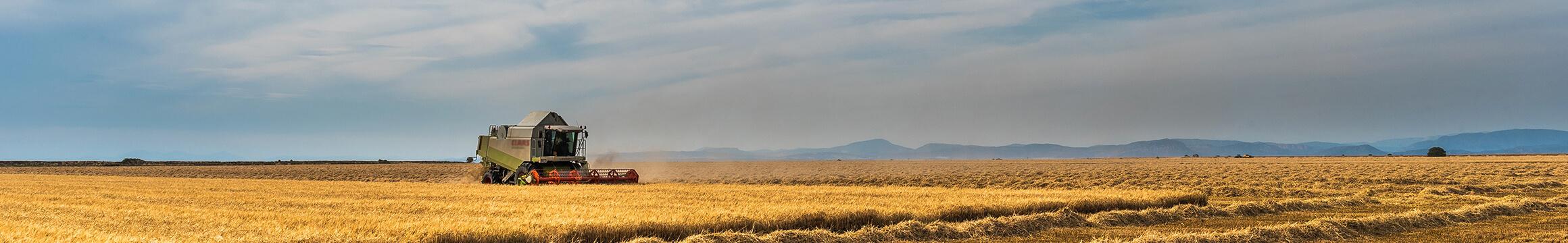 Farming Rural 08
