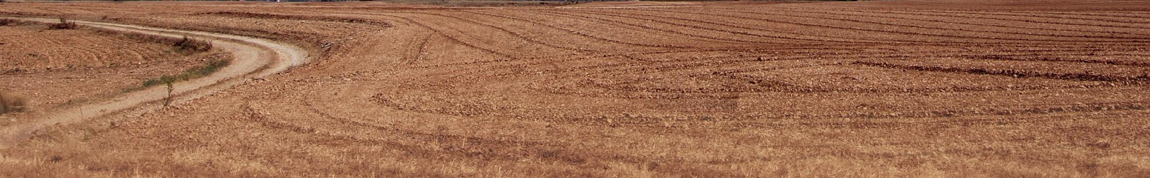 Farming Rural 09