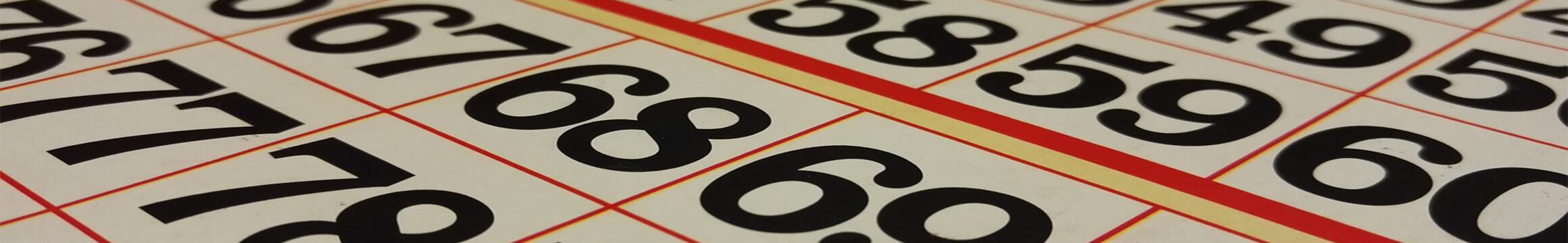 Bingo01