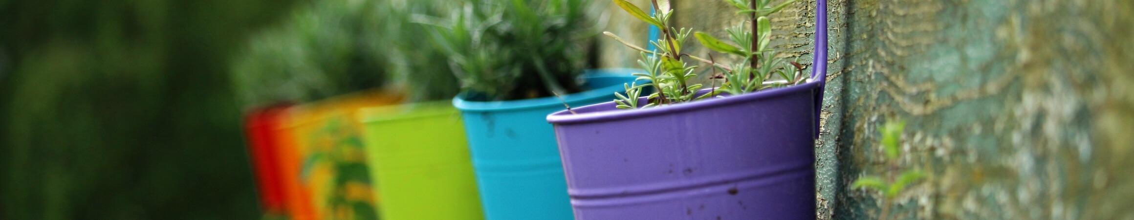 Gardening 05