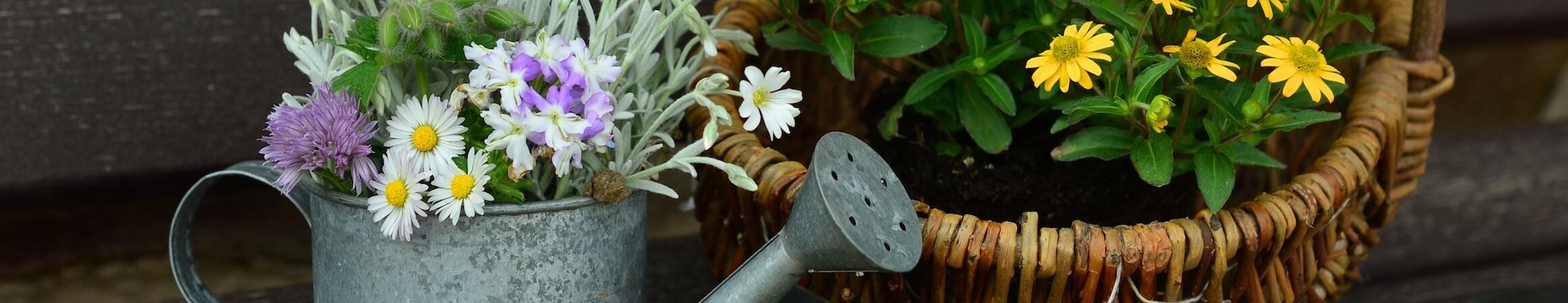 Gardening 06
