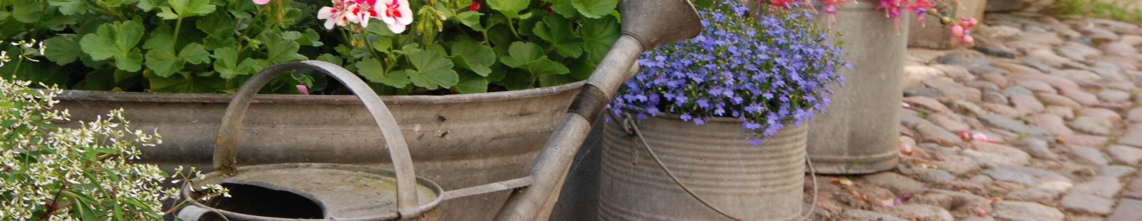 Gardening 07